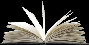 речник на SEO термините